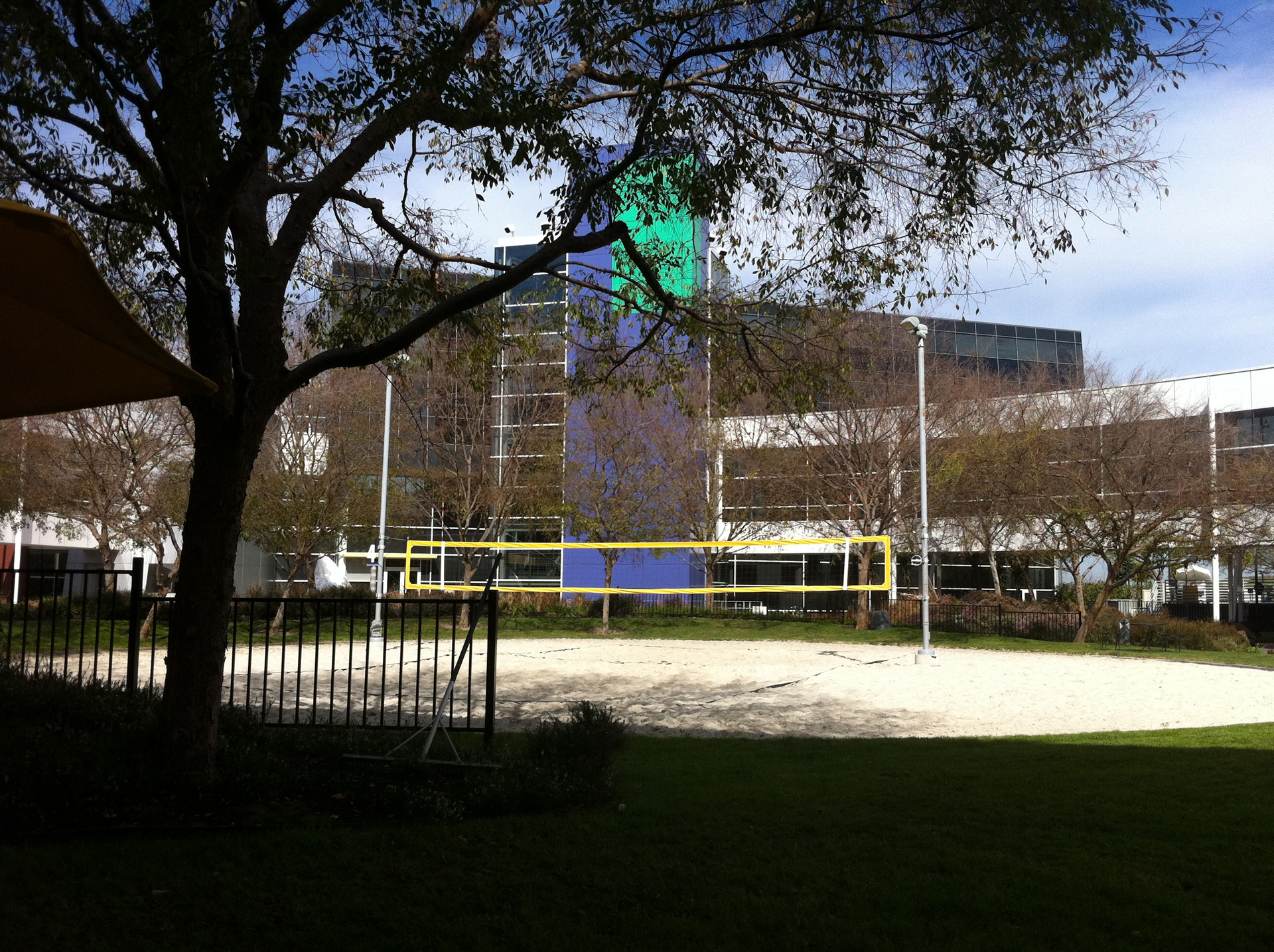 Google outside yard with a beach volley court for their employees to play